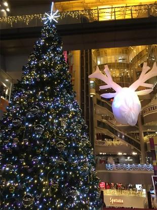 2015年 BIGSTEPのクリスマスツリー
